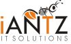 I Antz Solutions IT Solutions